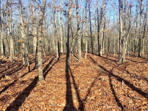 Arkansas Ozarks Land Bull Shoals : Yellville : Marion County : Arkansas