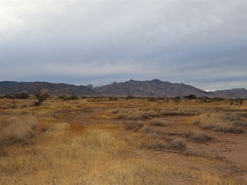 Nearly an Entire Acre to Build Your : Cochise : Arizona