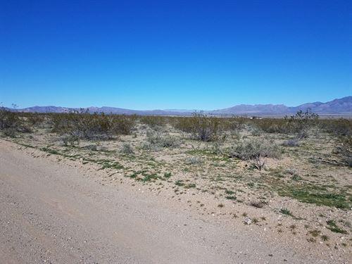 5 Acres, Gateway Acres, Dolan : Dolan Springs : Mohave County : Arizona