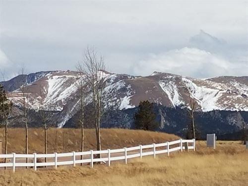Great 2 Acres in Divide, Colorado : Divide : Teller County : Colorado