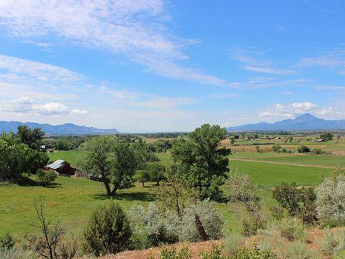 Orchard Land Southwest CO Water : Dolores : Montezuma County : Colorado