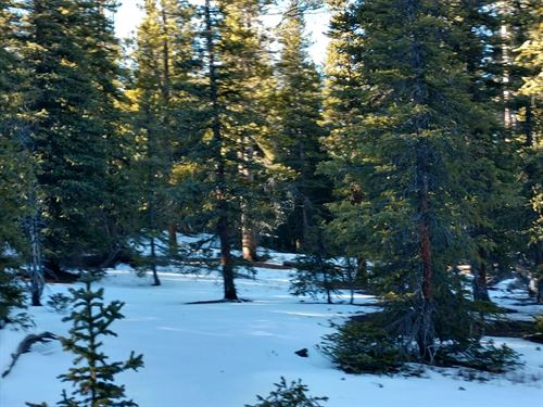 Land Fairplay CO 80440 Camping : Fairplay : Park County : Colorado