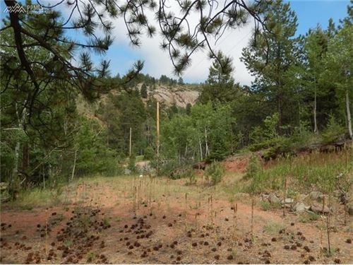 Mountain Property With Water Septic : Florissant : Teller County : Colorado