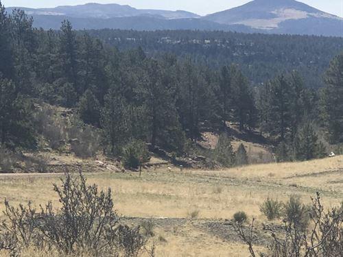 Beautiful 5 Acre Parcel Amazing : Guffey : Park County : Colorado