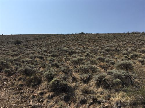 2.5 Acres For Sale With Great Views : Gunnison : Colorado