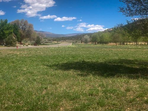 Golf Course Property Cedaredge : Cedaredge : Delta County : Colorado