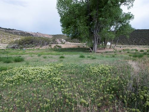 Mountain Golf Property, Cedaredge : Cedaredge : Delta County : Colorado