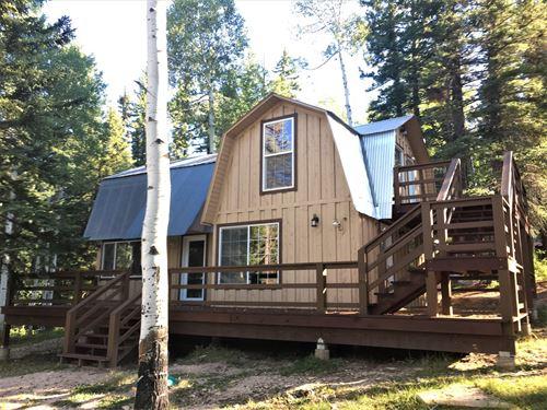 Cabin Mountains Bordering National : Mancos : Montezuma County : Colorado