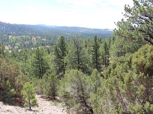 Land in Custer County Colorado : Westcliffe : Custer County : Colorado