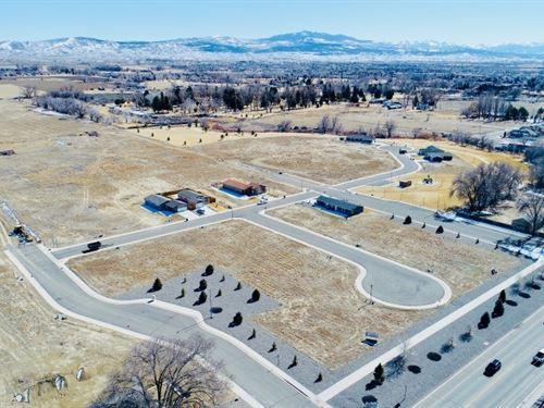Montrose, Colorado Land Newer : Montrose : Colorado