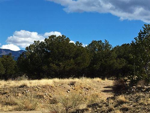 Riverfront Community Land, 1119 : Poncha Springs : Chaffee County : Colorado