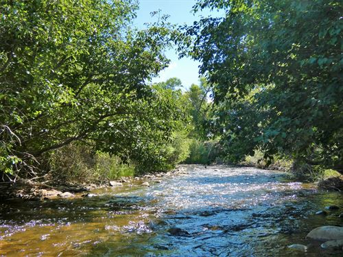 River Front Property-1115 Little : Poncha Springs : Chaffee County : Colorado