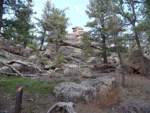 Mountain Land in Private Fox Acres : Red Feather Lakes : Larimer County : Colorado