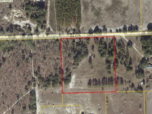 Great Location : Bell : Gilchrist County : Florida