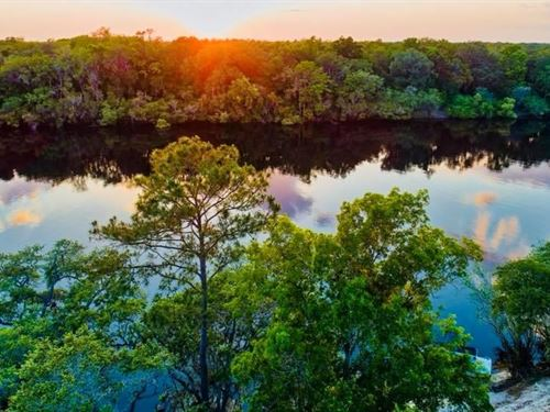 Enjoy Suwannee River, Bell, Florida : Bell : Gilchrist County : Florida