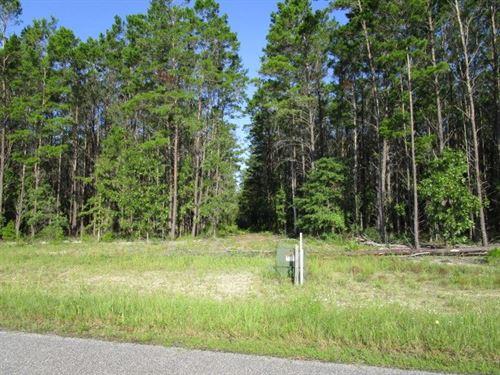 10 Acres Bristol FL Gated Community : Bristol : Liberty County : Florida