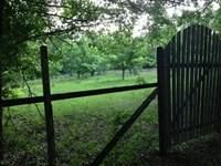 North Florida Land Near Monticello : Greenville : Jefferson County : Florida