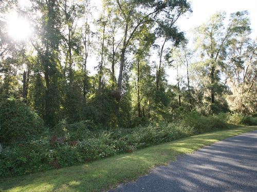 Half Acre Lot In North Florida : Lake City : Columbia County : Florida