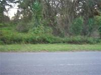 Vacant Land, Central Florida, Build : Lake Wales : Polk County : Florida
