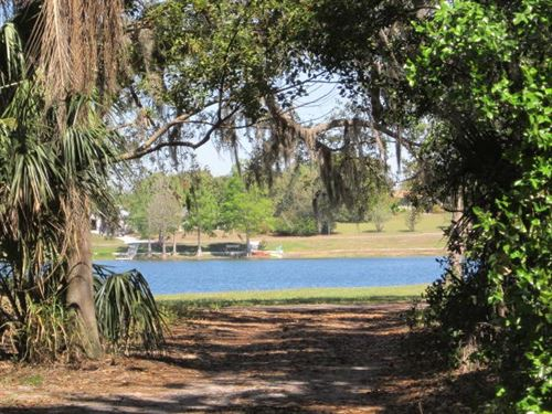 Waterfront Large Wooded Lot : Lake Wales : Polk County : Florida