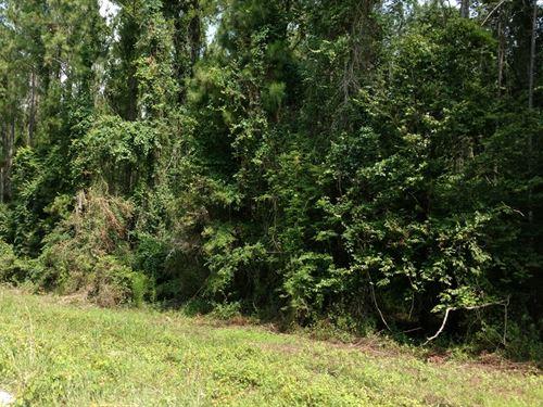 10 Acres In Live Oak, Florida : Live Oak : Suwannee County : Florida