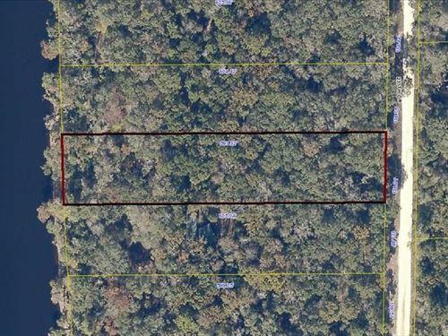 Suwannee River Lot For Sale : Live Oak : Suwannee County : Florida