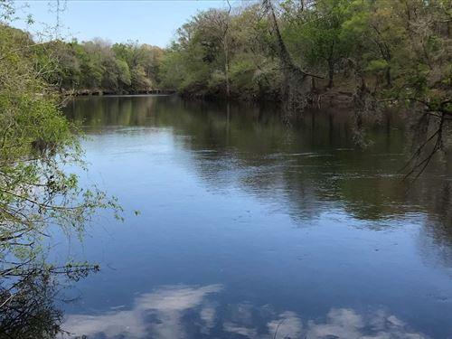 Over 1 Acre on Suwannee River : Live Oak : Suwannee County : Florida