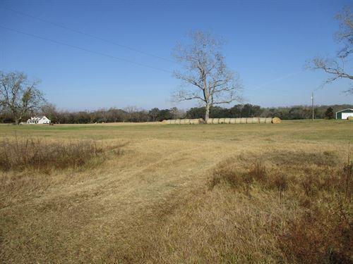 North Florida Lot 10 Acres North : Monticello : Jefferson County : Florida