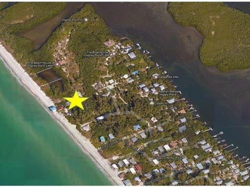 Lot Little Gasparilla Island : Placida : Charlotte County : Florida