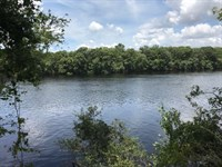 Suwannee River Waterfront Property : Old Town : Dixie County : Florida