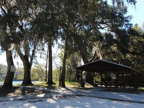 Nice Lot Deep Portion Suwannee : Old Town : Dixie County : Florida