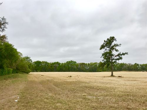 Commercial Vacant Land City Limits : Trenton : Gilchrist County : Florida