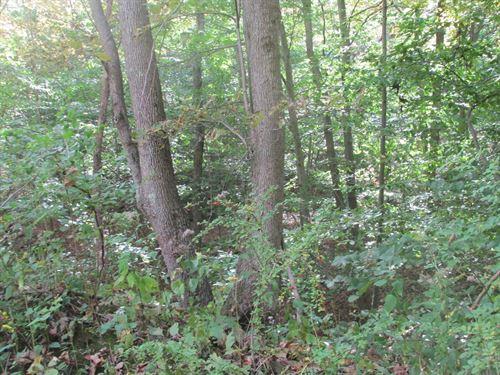 Western MD Land For Sale : Flintstone : Allegany County : Maryland