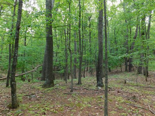 Acreage For Sale : Oldtown : Allegany County : Maryland