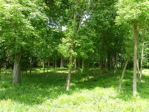 Annandale MN Lot, Deeded Access to : Annandale : Wright County : Minnesota