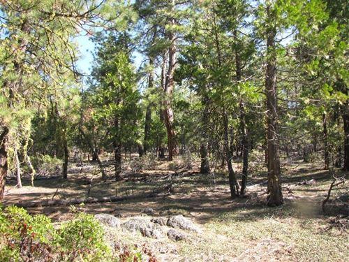 2.33 Acres In Bonanza, OR : Bonanza : Klamath County : Oregon