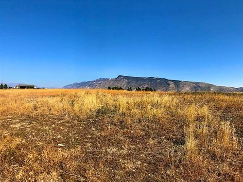 Five Acres of Vacant, Irrigated LA : Cody : Park County : Wyoming