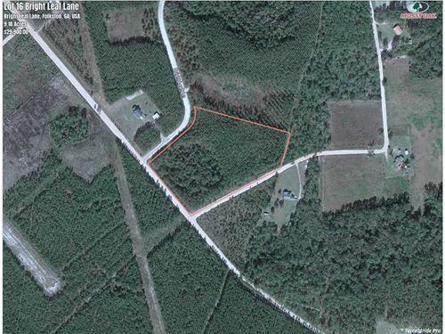 9 Acres Land For Sale in Charlton : Folkston : Charlton County : Georgia