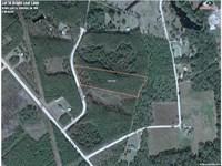 5.98 Acres Land For Sale Charlton : Folkston : Charlton County : Georgia
