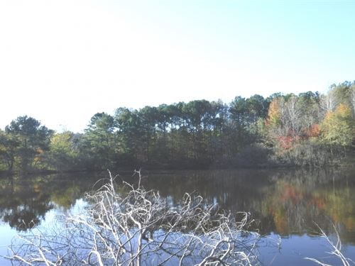 16 Acres With Home In Prentiss Cou : New Site : Prentiss County : Mississippi