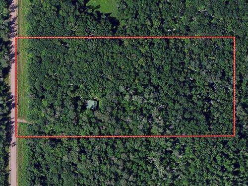 Cabin Woods, Recreational, Hunt : Finlayson : Pine County : Minnesota