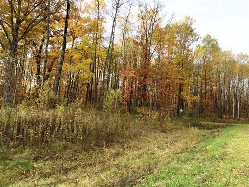 North Oaks Lot / Buildable / East : Sandstone : Pine County : Minnesota