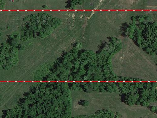 Land For Sale in The Ozarks : Naylor : Ripley County : Missouri