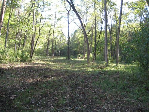 Missouri Hunting Land 15 Acres : Stover : Morgan County : Missouri