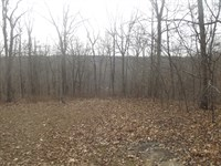 7 Acres M/L In Wappapello Mo : Wappapello : Wayne County : Missouri