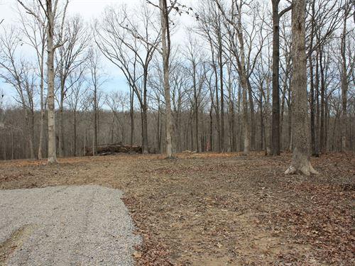 Wappapello Mo Recreational Land : Wappapello : Wayne County : Missouri