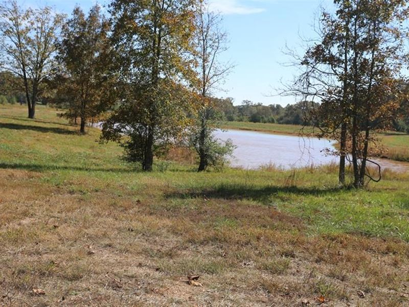 Residential Lots Mo. Ozarks : West Plains : Howell County : Missouri