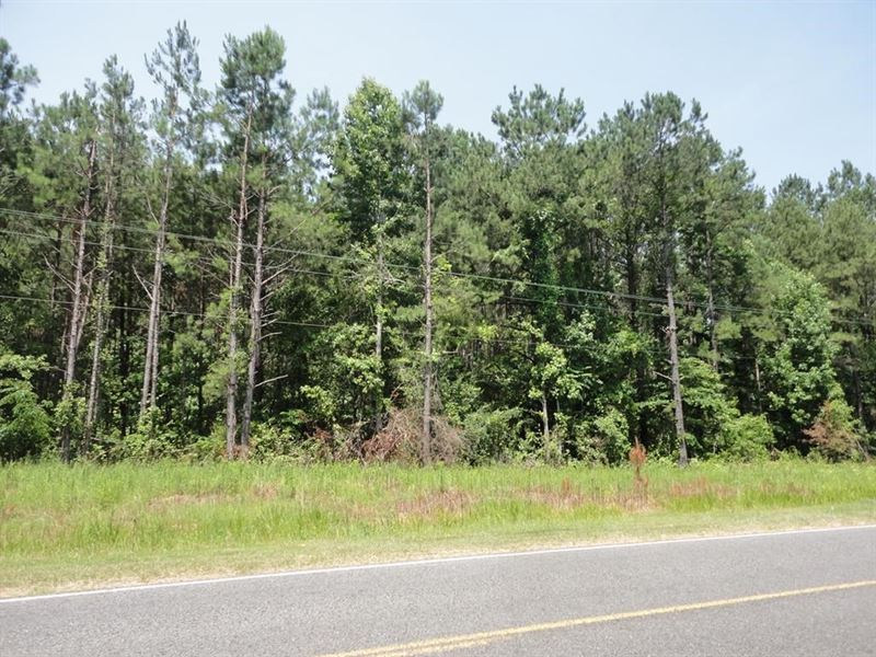 5 Acres Lincoln County Brookhaven : Brookhaven : Lincoln County : Mississippi