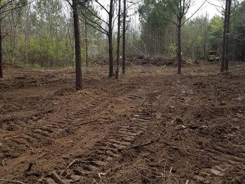 18 Acres Caston Creek Wildlife : Meadville : Franklin County : Mississippi