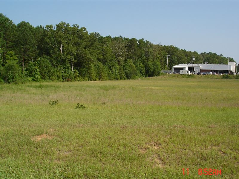 Commercial Land In Winston County : Louisville : Winston County : Mississippi